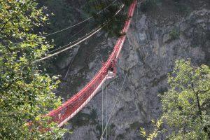 pont de Niouc